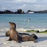 Viajefilos en La Espanola, Galapagos 107