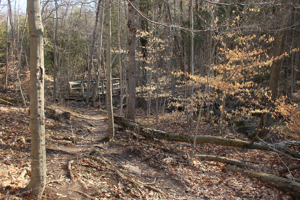 Crawford Lake & Rattlesnake Point 04