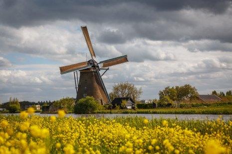 Typical Dutch @Kinderdijk