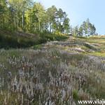 6 Viajefilos en el lago Baikal 067