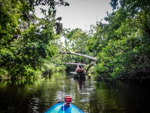 Juniper Springs Creek-103