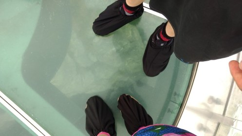 Skywalk booties