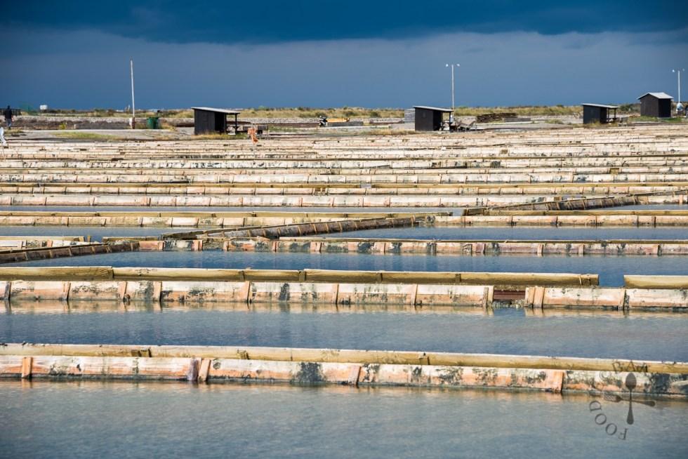 Sečovlje Saltworks