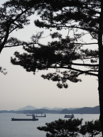 Taejongdae (태종대)
