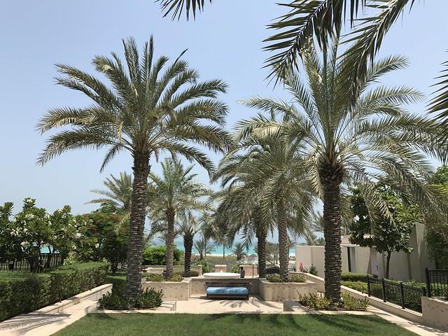 The St. Régis Abu Dhabi Saadiyat Island