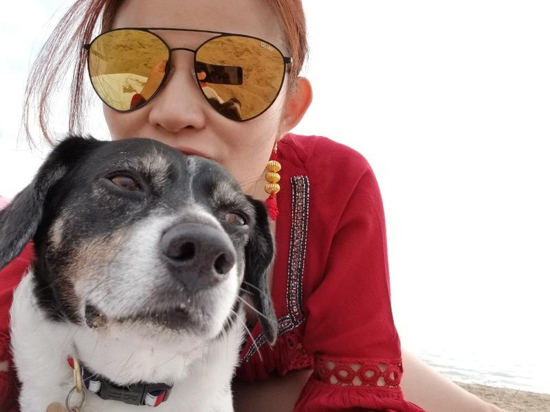 beach-quay-australia-mirrored-sunglasses-dog-9