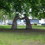 Im Park an der Ecke Chaussee- und Liesenstraße
