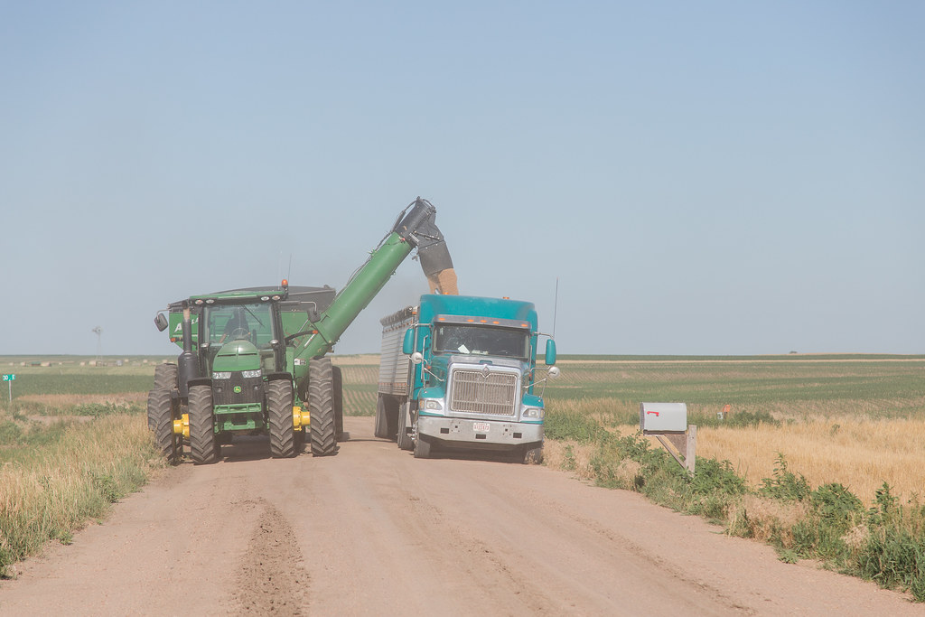 High Plains Harvesting - Laura