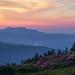 Grandfather Mountain...from Grassy Ridge, Roan Mountain North Carolina