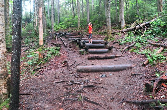 Arethusa Falls Trail Steps