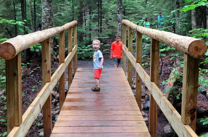 Arethusa Falls Trail Bridge
