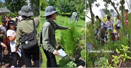 Garden Troopers Horticulturists