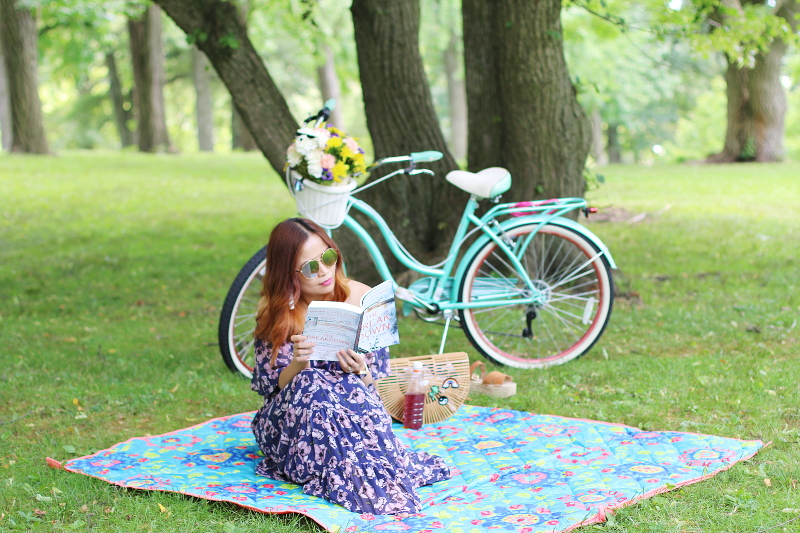 the-breakdown-book-picnic-bike-1