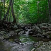 Hiking White Oak Canyon & Cedar Run
