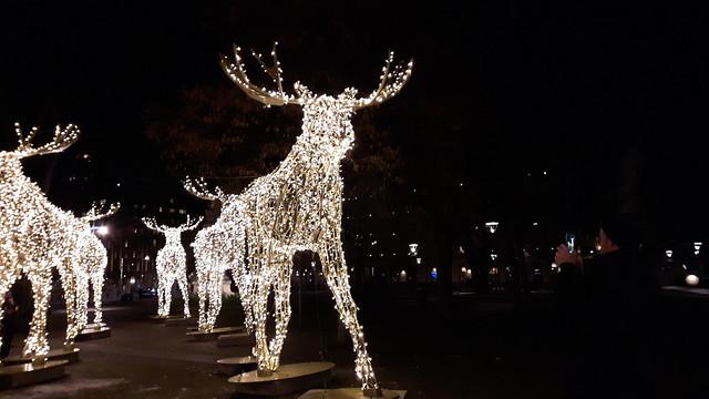 Kerst in Stockholm (4)
