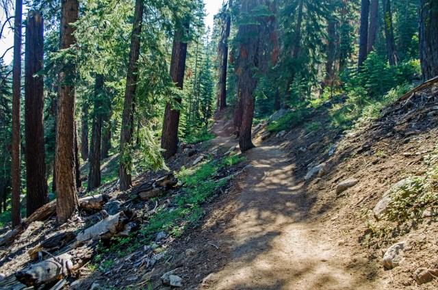 2017-07 Sierra NF trip-11_edited-1