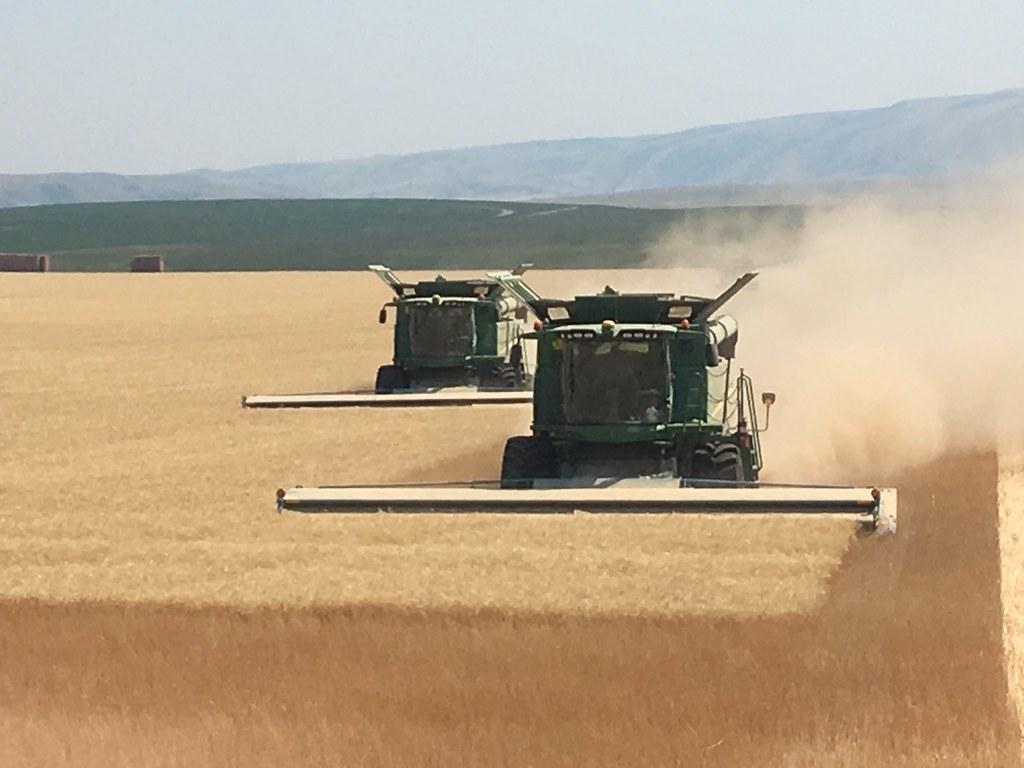 High Plains Harvesting 2017 (Willem)