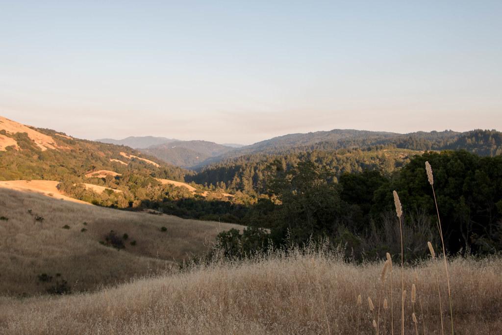 07.23. Monte Bello Open Space Preserve
