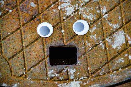 Googly-Eye Bombing Downtown Greenville-59
