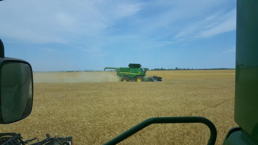 Schemper 2017 - South Dakota Wheat Harvest