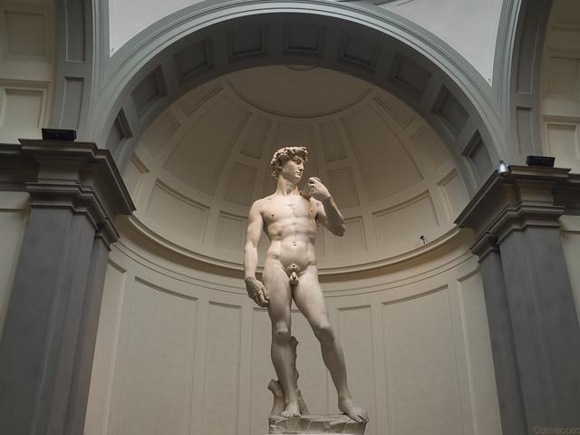 94--13-7-2017-Galería-de-la-Academia,-David-de-Miguel-Ángel-1504-4-Web