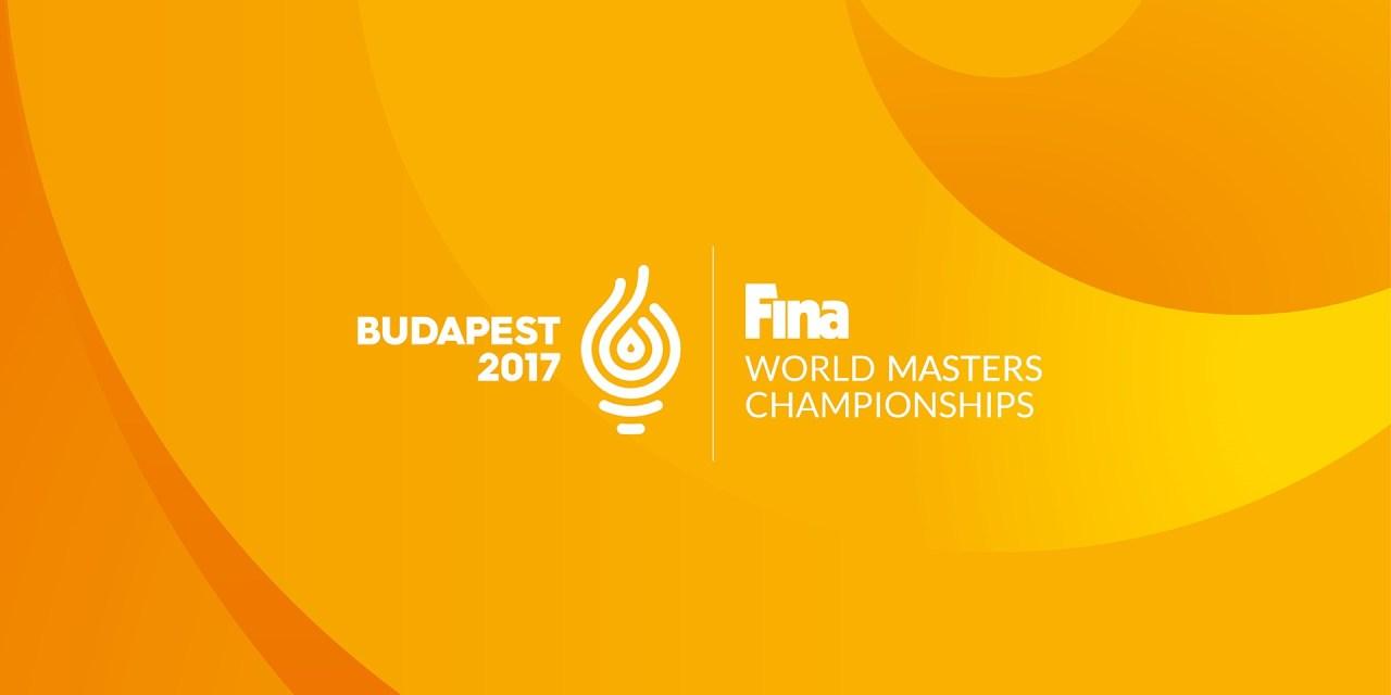 Mondiali Master Budapest 2017: quattro piscine per il nuoto e le ondate delle OW