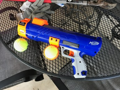 Nerf for dogs
