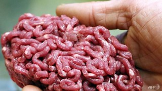 spain-s-guardia-civil-police-force-began-their-investigation-in-2016-after-detecting-unusual-behaviour-in-horsemeat-markets-1500226444788-4