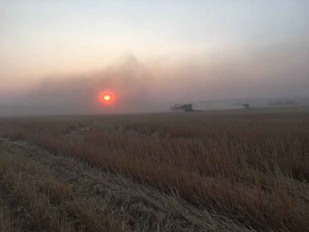 High Plains Harvesting 2017 (Mark)