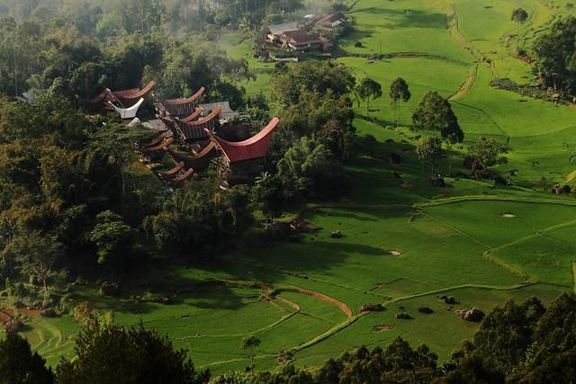 Tongkonan Houses -Aerial View
