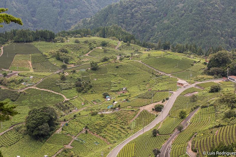 Machu-Picchu-Gifu-22