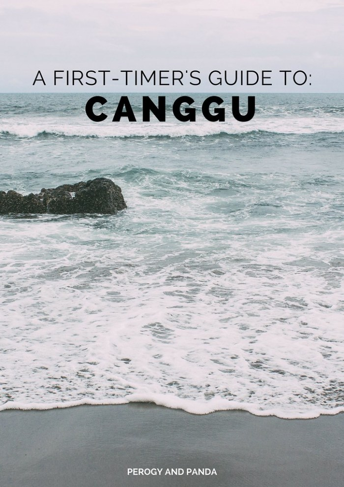 A First-Timer's Guide to Canggu - A Perogy & Panda Bali Destination Guide