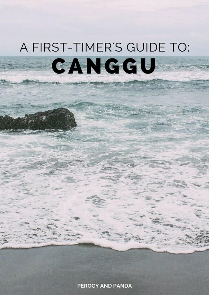 A First-Timer's Guide to Canggu - A Perogy & Panda Bali Destination Guide