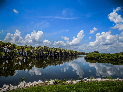 Fellsmere Stick Marsh-1