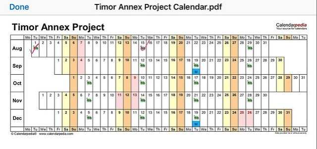 Timor cycle 2