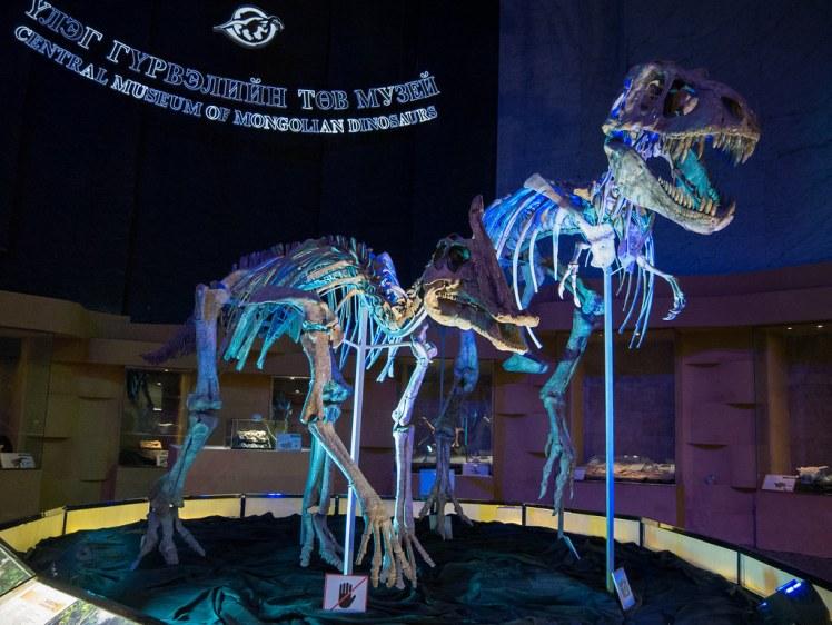 Central Museum of Mongolian Dinosaurs - Ulaanbaatar