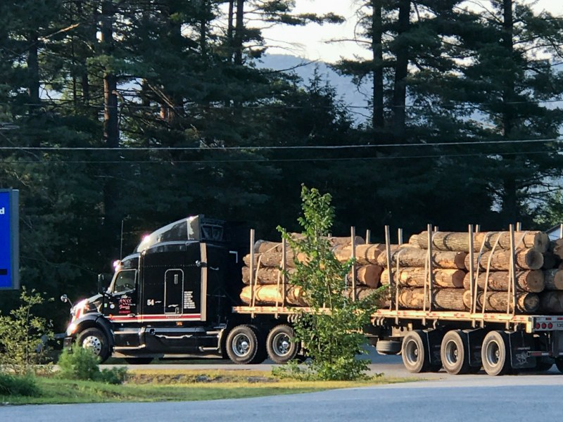 Logging truck. Mobil, Rt Pottersville, Adirondack Northway, I-87