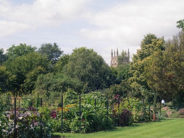 oxford_botanic_garden_14