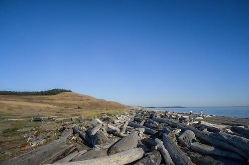 Cook's Beach on San Juan Island-001