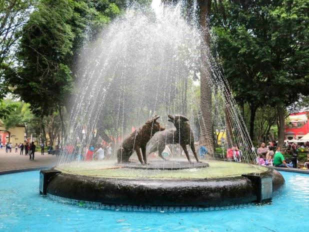 Fuente en Coyoacan