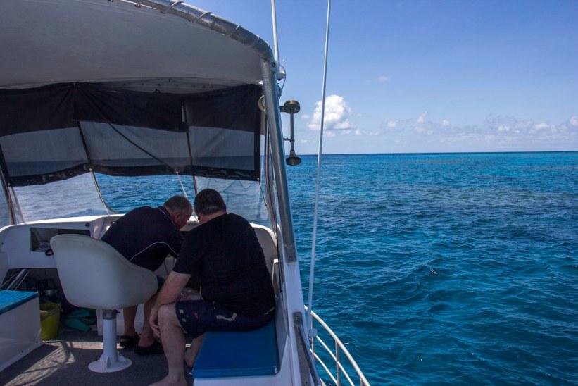 Sejllads på Great Barrier Reef, Australien