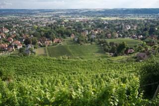 Weinkulturlandschaft