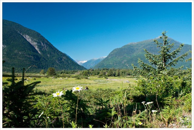 Where the Bella Coola empties