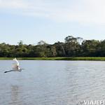 Viajefilos en la Amazonia, Peru 139