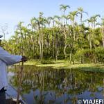 Viajefilos en la Amazonia, Peru 156