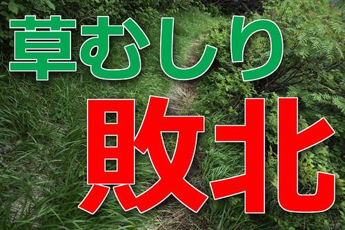 草むしり敗北_edited-1