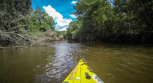 Lynches River with Lowcountry Unfiltered-82