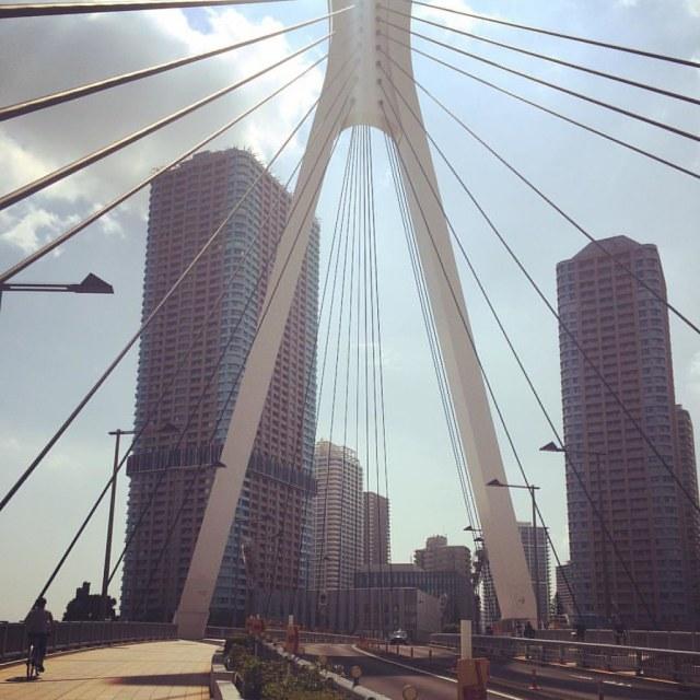 Chuo-Ohashi Bridge stretching towards Tsukudajima. #bridge #riverfront #riverside #tokyo #japantravel