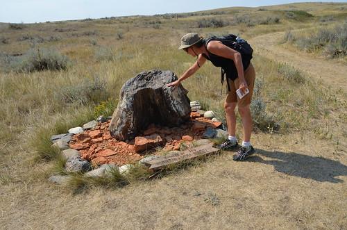 Grasslands East block petrified stump
