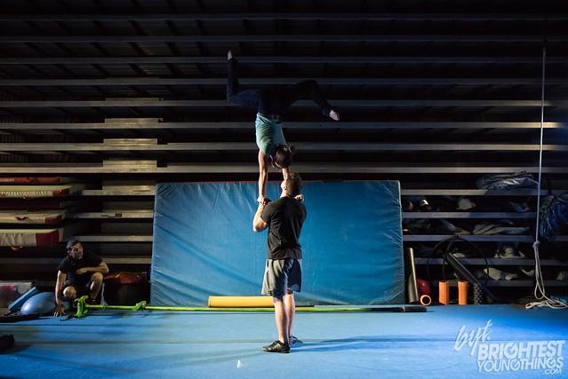 Cirque OVO-7831